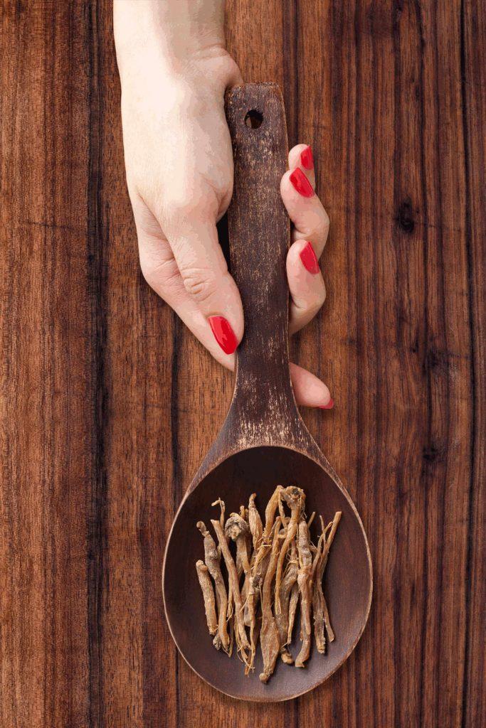 Ginsengwurzel auf Kochlöffel in Frauenhand